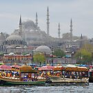 Boats and Mosques by Peter Hammer