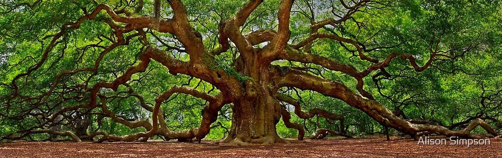 Angel Oak Tree by Alison Simpson