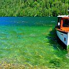 Fresh and green water by Daidalos