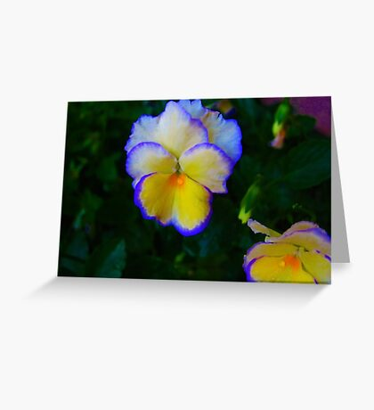 So you need a little color Greeting Card