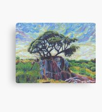 Tree at Black Canyon of the Gunnison National Forest Canvas Print
