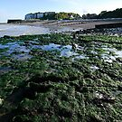 Low tide at Oldstairs Bay  by John Gaffen