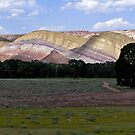Painted Hills I - Dubois, Fremont County, WY by Rebel Kreklow