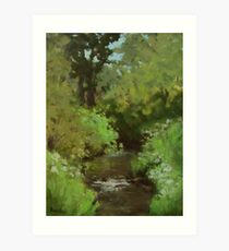Creek at North Bank Habitat Mgmt Art Print
