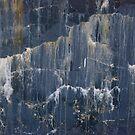 Frozen Angels by Lita Medinger