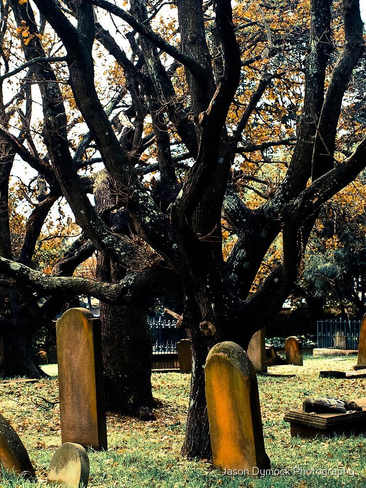 Cemetery Trees by Jason Dymock Photography