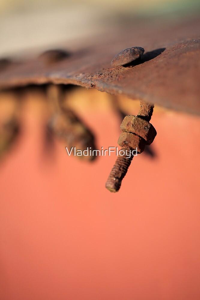 Rusty by VladimirFloyd