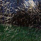 Backyard Watersprinkler Fireworks by LauraBroussard