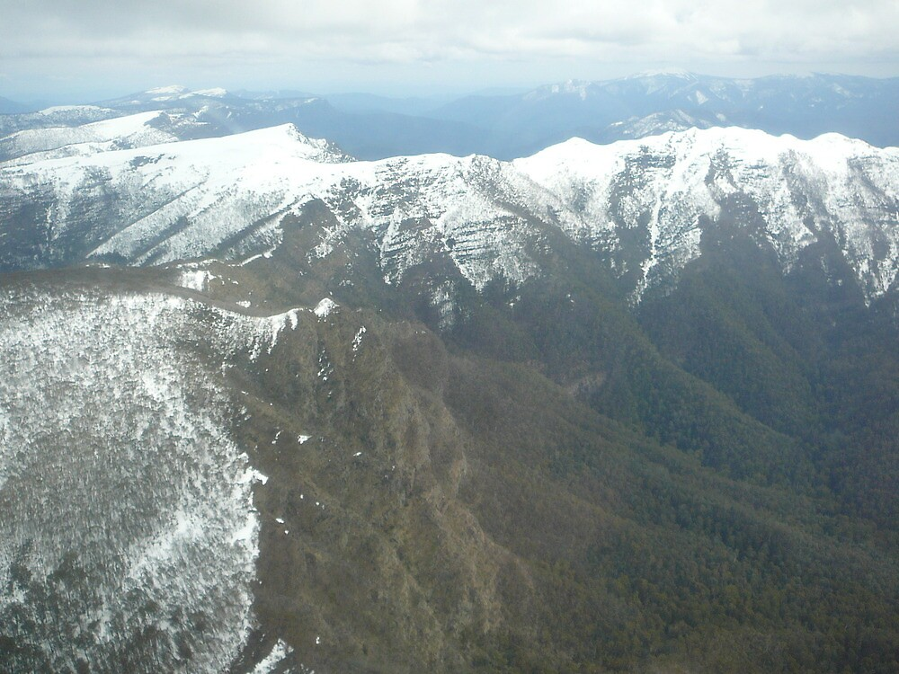 Mt Howitt, Crosscut saw from above by DannicaS