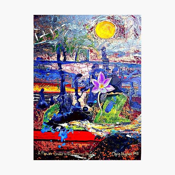 Flower Under a Darkening Sky Original Artwork Photographic Print