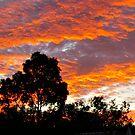 Eltham Red Sky by dieselpete