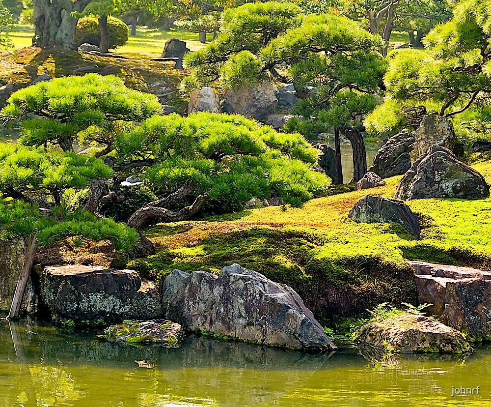 Moss garden and cypress trees in kyoto japan by johnrf - Moosgarten kyoto ...