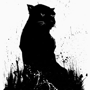 Black Panther by perovesleen