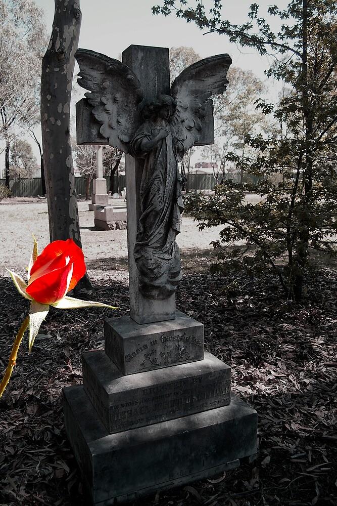 Cemetery Rose bud by dieselpete