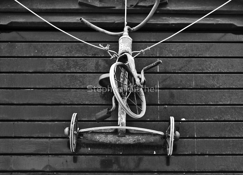 Bike on a Rope by Stephen Mitchell