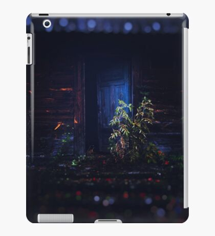 Door iPad Case/Skin