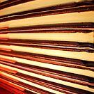 Book Ends  by DearMsWildOne