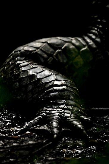 The Dark Side:  Alligator Armor by Joe Jennelle