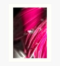 Pink Gerb Art Print