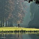 Walking the dog in the morning park by jchanders