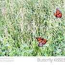Butterfly Kisses by Janette  Dengo
