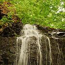 Bridal Veil Falls by Sally Kady