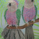 Hawk Headed Parrots by Joann Barrack