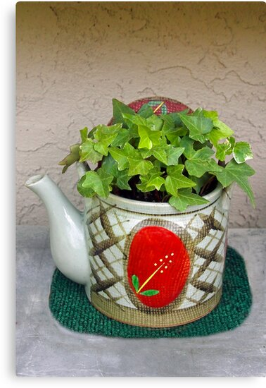 Potted Teapot by Heather Friedman