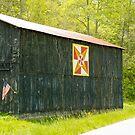 Kentucky Barn Quilt - July Summer Sky by mcstory