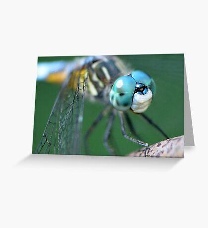 A Dragonfly Friend Greeting Card