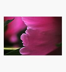 Finding The Peace Within Photographic Print