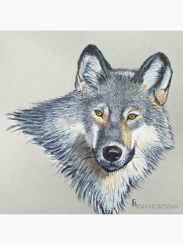 Wolf portrait by SophieBrodin