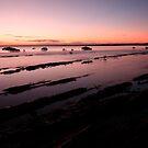 Purple sunrise by Kym Howard