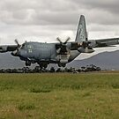 RAAF 50th Anniversary C-130(1958-2008) by Cecily McCarthy
