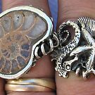 rings from tideline series by betty porteus