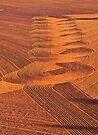 Swirls in the Soil by Helen Vercoe