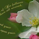 His fullness: Grace upon grace ~ John 1:16 by Robin Clifton