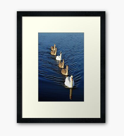 Come along Dear, stay in line. Framed Print