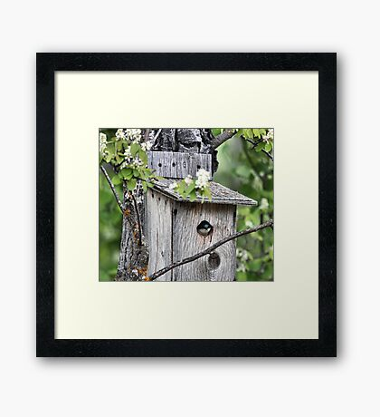 Home Sweet Home Framed Print