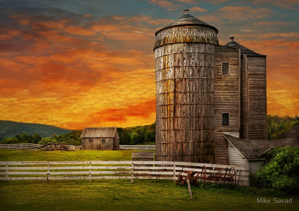 Farm - Welcome to the farm  by Mike  Savad