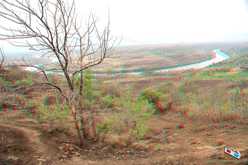 3D Anaglyph Tree by chakraonline