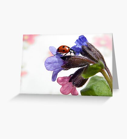 You leave me breathless ... Greeting Card