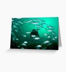 Diver and vortex of fish Greeting Card