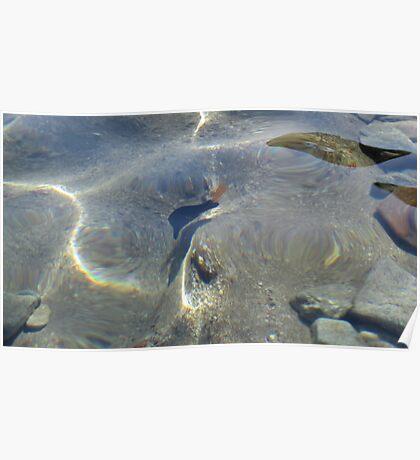 Fish at my Feet 6 Poster
