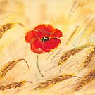 Poppy in the Corn by Mike HobsoN
