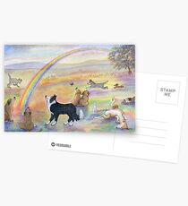 Dogs wait for their humans at Rainbow Bridge Postcards