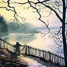 Waterloo Lake, Roundhay Park, Leeds by Glenn Marshall