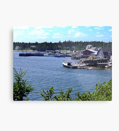 Bush Island-Nova Scotia Metal Print