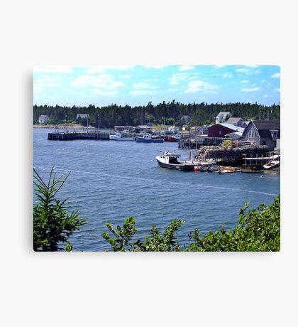 Bush Island-Nova Scotia Canvas Print