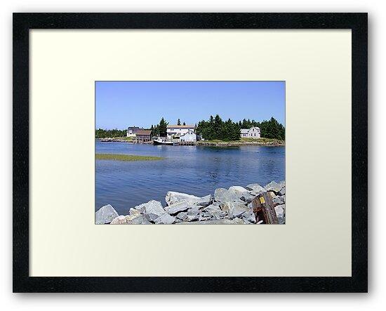 Bush Island (2) by George Cousins